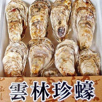 《馬蹄蛤》生蠔(約3-5顆/斤)共八斤