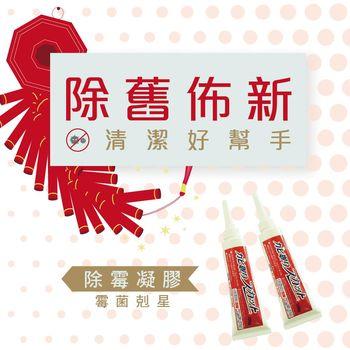 ◆ 除霉高手◆ 日本矽立清除霉凝膠100G ◆ 兩入組