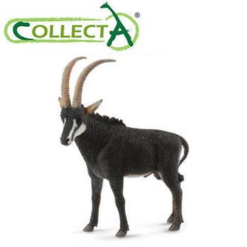 【CollectA】羅馬羚羊(雄)
