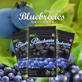JMA 加拿大公爵藍莓乾-40g