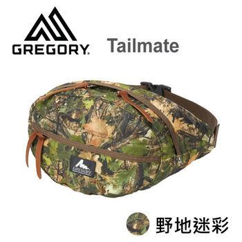 【美國Gregory】Tailmate日系休閒腰包-野地迷彩-S