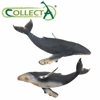 【CollectA】海洋系列 - 座頭鯨