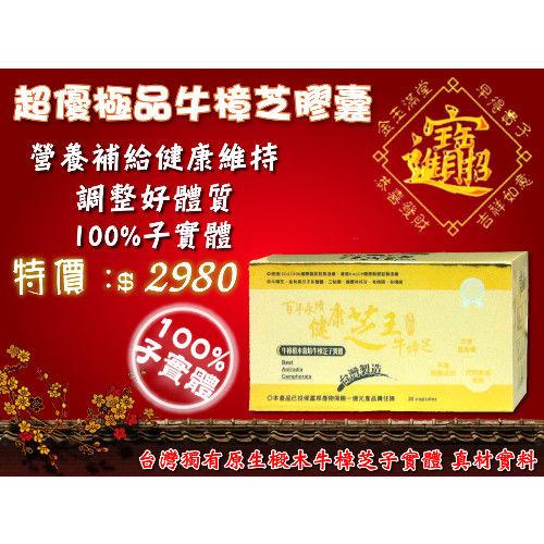【百年永續健康芝王】超優極品牛樟芝膠囊 (30顆/盒)