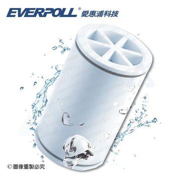 【愛惠浦科技 EVERPOLL】  MK-809微分子SPA沐浴器/除氯專用濾芯(MKC)
