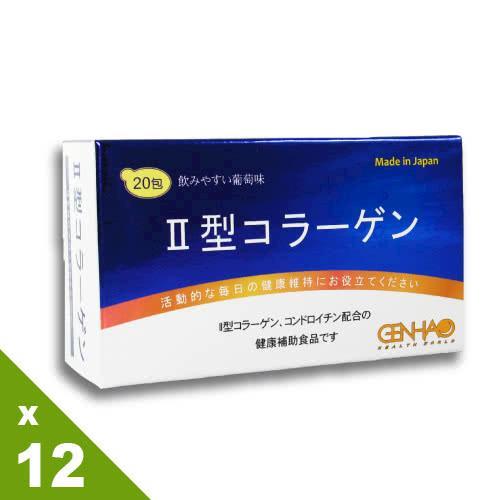 【GENHAO】超值特惠分享組 Ⅱ型膠原蛋白 12盒_日本製造(20包/盒)