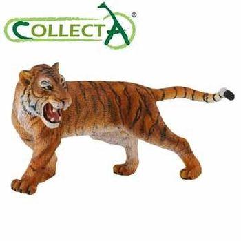 【CollectA】公老虎