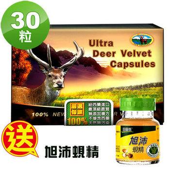【瓦特爾】紐西蘭鹿茸30粒/盒 (贈:白蘭氏旭沛蜆精41ml*2瓶)