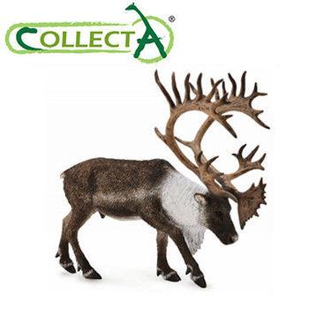 【CollectA】北美馴鹿