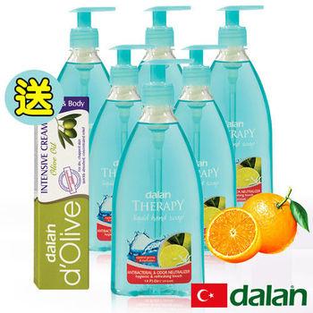 【土耳其dalan】 抗菌&消除異味健康洗手乳6入超值組贈橄欖深層強效滋養修護霜20ml