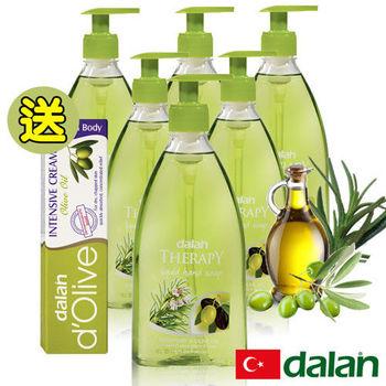 【土耳其dalan】 迷迭香橄欖油健康洗手乳6入超值組贈橄欖深層強效滋養修護霜20ml