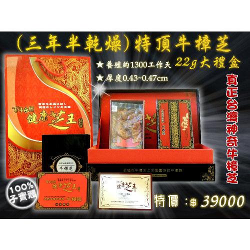 【百年永續健康芝王】牛樟芝/菇(三年半特頂) 乾燥品 (22g 大禮盒)