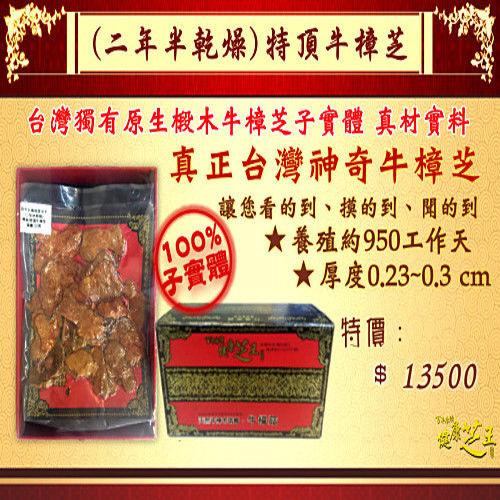 【百年永續健康芝王】牛樟芝/菇(二年半特頂) 乾燥品 (11g /1兩)