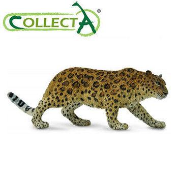 【CollectA】遠東豹