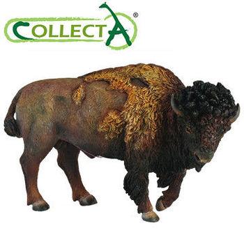 【CollectA】美洲野牛