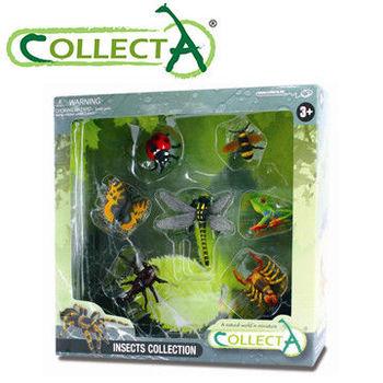 【CollectA】昆蟲禮盒組(7pcs)
