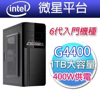 【微星平台】經典髮絲紋(微星 H110M PRO-VH/6代Intel G4400-3.3G/1TB大容量)Intel最新6代入門款