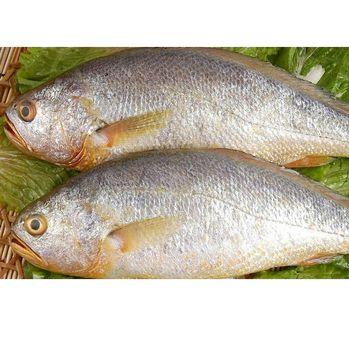 正富貴黃魚鮟鱇魚雙料鮮魚組