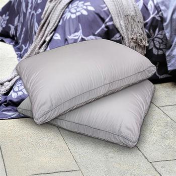 FITNESS 日本進口纖維 銀離子舒柔枕(2顆)