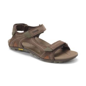 【美國VIONIC法歐尼】機能運動涼鞋(Boyes-咖啡)