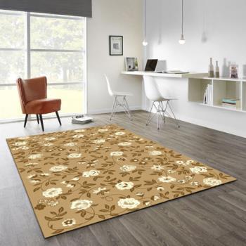【范登伯格】阿爾發灰色魅力地毯-蓓蕾-140x200cm