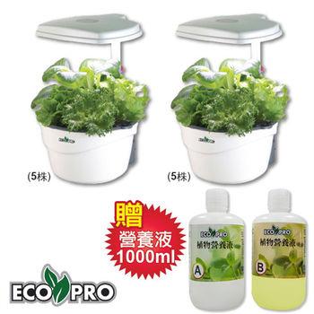 Ecopro大成長 LED室內水耕植物培植機雙機組(5株)x2 贈1000ml營養液