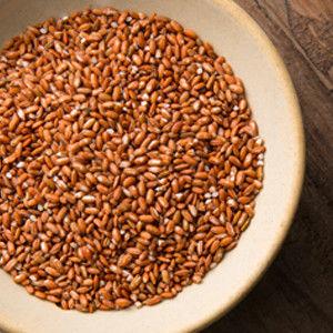 【富琳嚴選】農舞系列 紅米 原生種米無農藥種植(3包入)