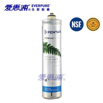 【愛惠浦EVERPURE】S100淨水器專用替換濾心/S100濾芯一支(公司貨)