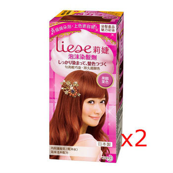 莉婕泡沫染髮劑 魅力彩染系列 黑醋栗色(2入)