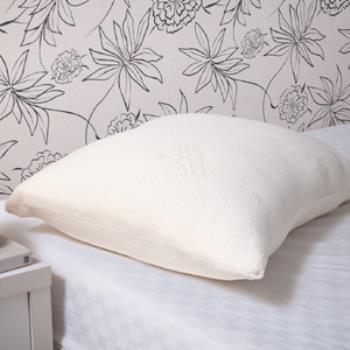 Medlight美德耐i feel親水綿記憶枕-可塑型2.8kg