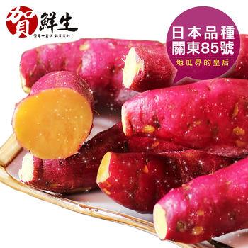 【賀鮮生】日本團購美食-紫皮奶香栗子地瓜20包(1kg/包)