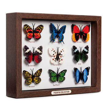 【Zakka雜貨網】蝴蝶標本圖釘-9入