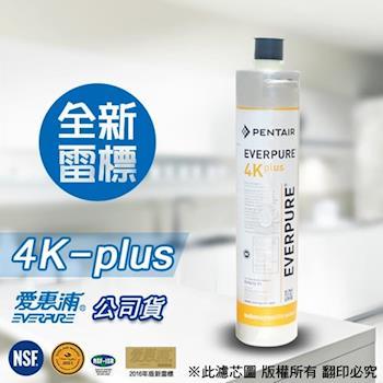 EVERPURE 愛惠浦原廠公司貨 4K plus 濾心