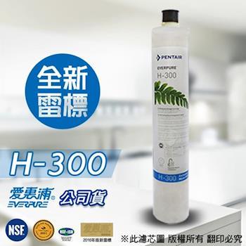 EVERPURE 愛惠浦原廠公司貨 H300 濾心