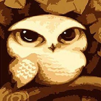 窩自在★藝術DIY彩繪數字油畫12款任選-貓頭鷹