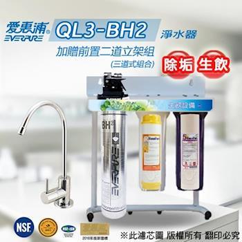 愛惠浦 EVERPURE 公司貨抑菌淨水器 QL3-BH2(加贈前置二道立架組)