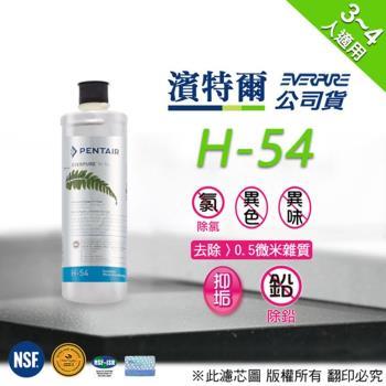 Pentair 濱特爾公司貨 Everpure H54 濾心