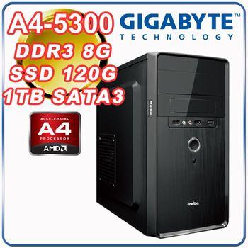 |技嘉A68H平台|雙核文書 A4-5300雙核 8G記憶體 1TB大容量 SSD 120G 經濟文書型桌上型電腦