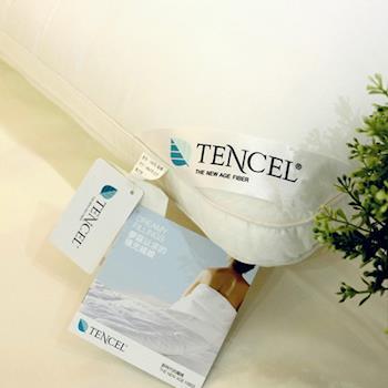 BBL奧地利TENCEL50/50側立天絲枕-一對