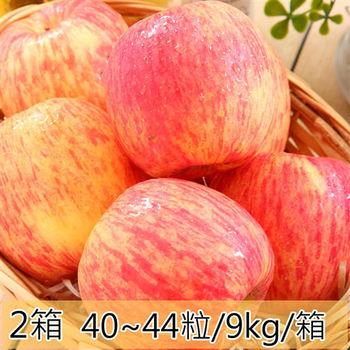 【一等鮮】智利蘋果2箱〈40~44粒/9公斤/箱〉