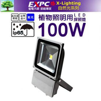 LED 100W 植物探照燈 (藍光) 植物生長燈 植物工廠 花卉燈 照明生長燈 X-LIGHTING