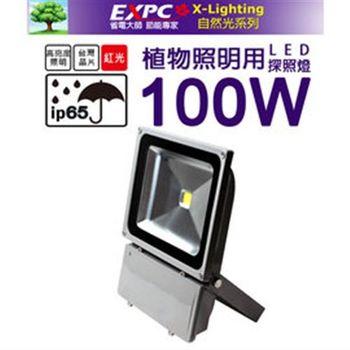 LED 100W 植物探照燈 (紅光) 植物生長燈 植物工廠 花卉燈 照明生長燈 X-LIGHTING