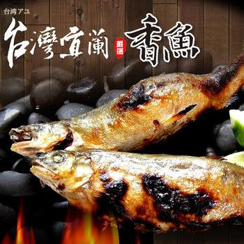 【買一送一】台北濱江宜蘭鮮嫩公香魚1盒(10尾/盒_買一送一共2盒)