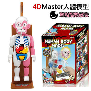 【4D master】人體拼裝模型趣味驚嚇益智玩具桌面遊戲