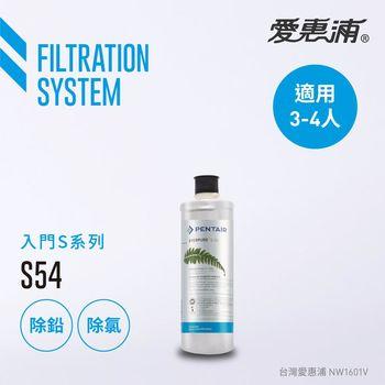 【愛惠浦公司貨】EVERPURE S54淨水濾芯(S54 CART)