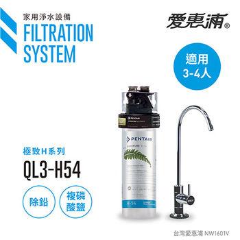 【愛惠浦公司貨】EVERPURE 除鉛雙效精緻型淨水器(QL3-H54)
