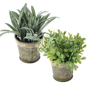 仿真植物盆栽2入組(隨機出貨)