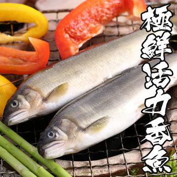 【海鮮世家】極鮮活力公香魚2盒組(10尾裝/920g/盒)