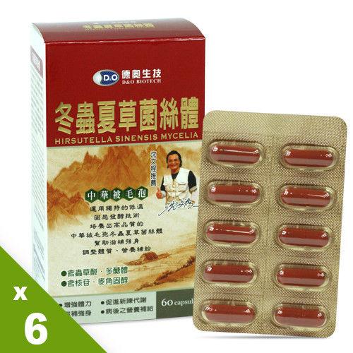 德奧沈文程推薦中華被毛孢冬蟲夏草菌絲體禮盒x6盒(60粒/盒)