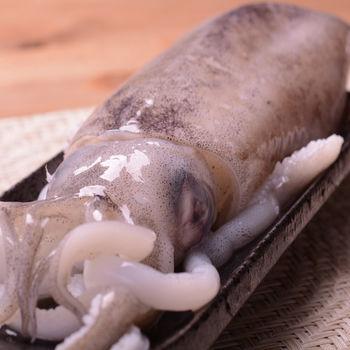【寶島福利站】漁港直出4A等級活凍軟絲3尾(350g/尾)