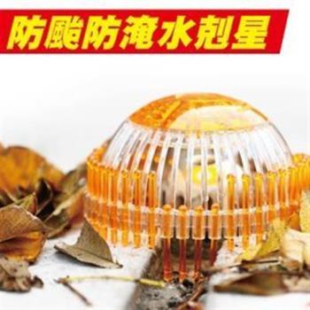 派樂 超速排水罩/豪大雨排水器(1入)